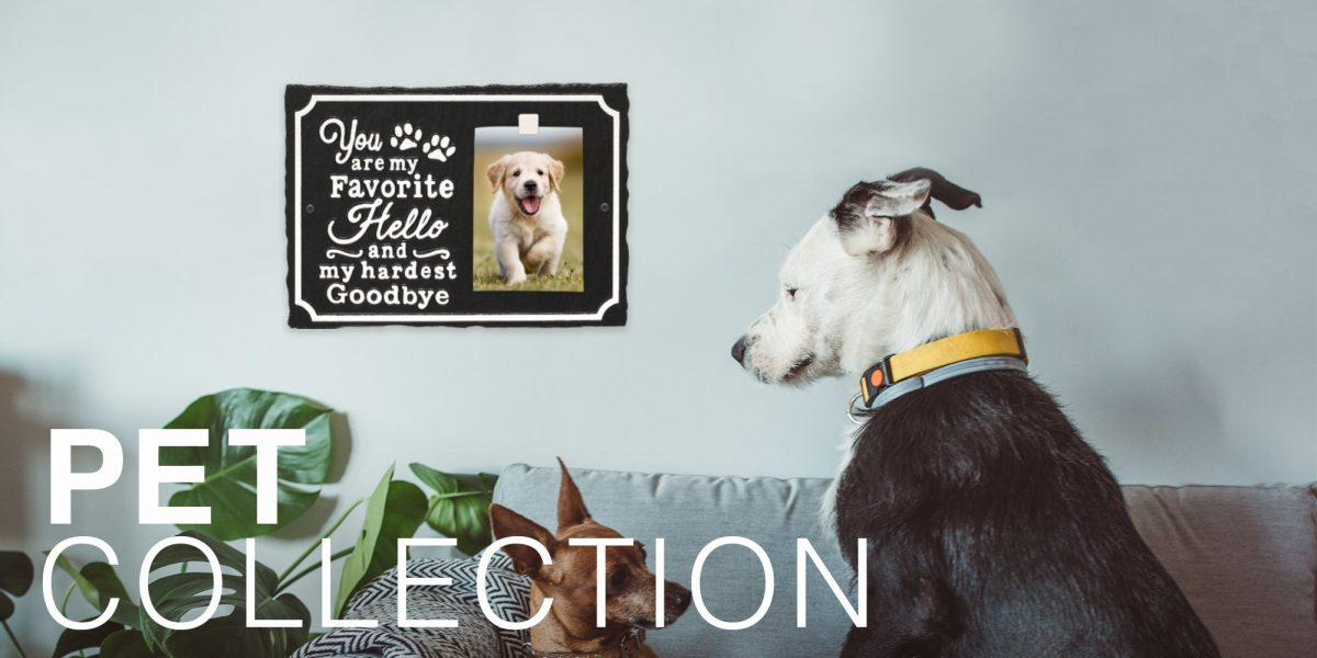 PET COLLECTION-Bottom of page